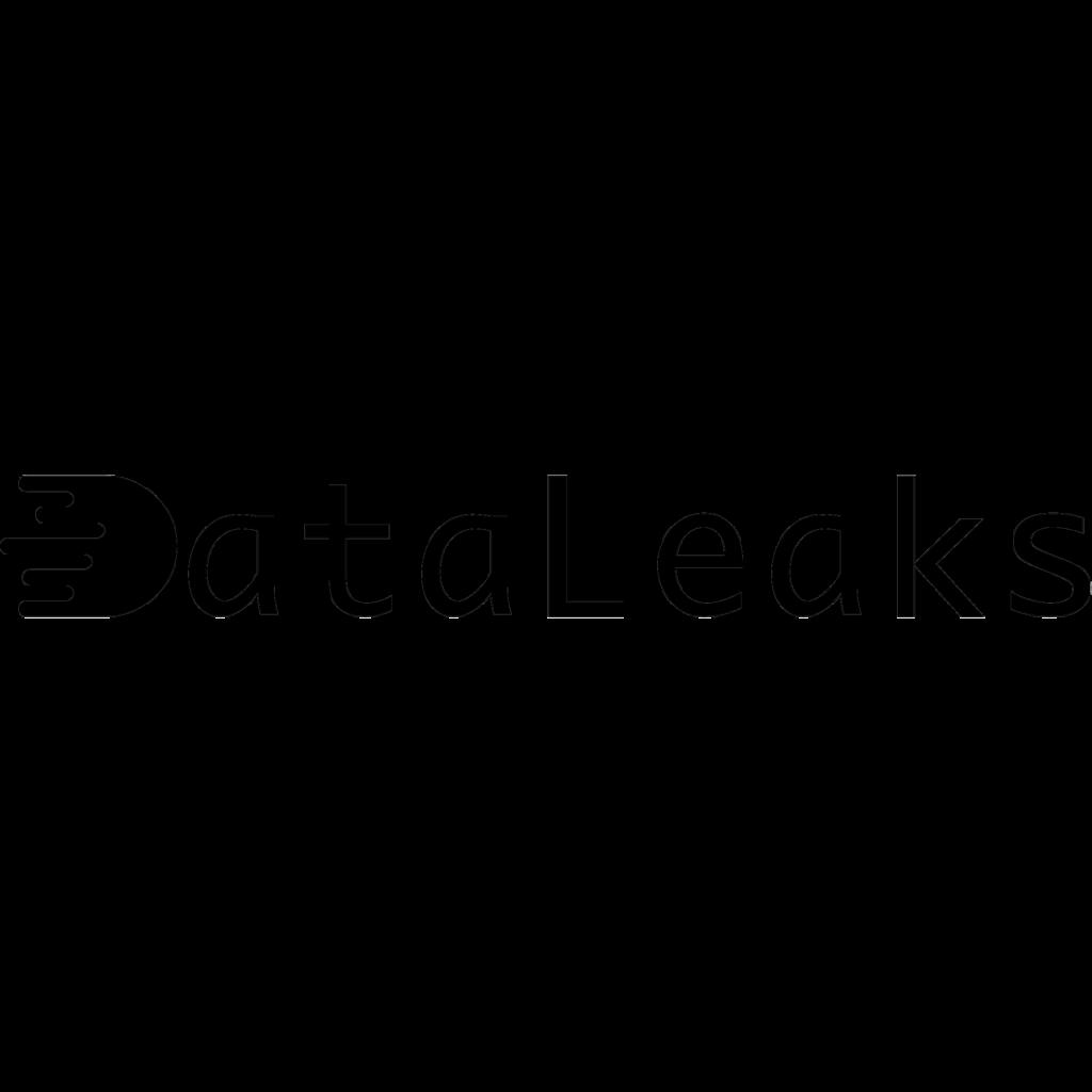 دیتالیکس دیتالیکس dataleaks2 1024x1024