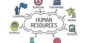 در ادامه ی مقاله قبلی که در رابطه با مدیریت منابع انسانی یک شرکت منتشر شد به شرح و توضیح چند قسمت دیگر از این دپارتمان که وجودش برای هر شرکتی میتواند یک مزیت رقابتی باشد میپردازیم. در مقاله قبلی به اهمیت بخش استخدام و انتخاب کارکنان اشاره کردیم و در این مقاله به دیگر بخش هایی که زیرمجموعه دپارتمان مدیریت منابع انسانی میباشند میپردازیم. مدیریت منابع انسانی مدیریت منابع انسانی-قسمت دوم neelie pic e1561976169696 900x450 1 300x150